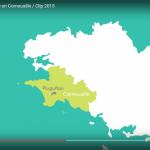 Video_ECCO
